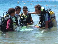 diving with your school